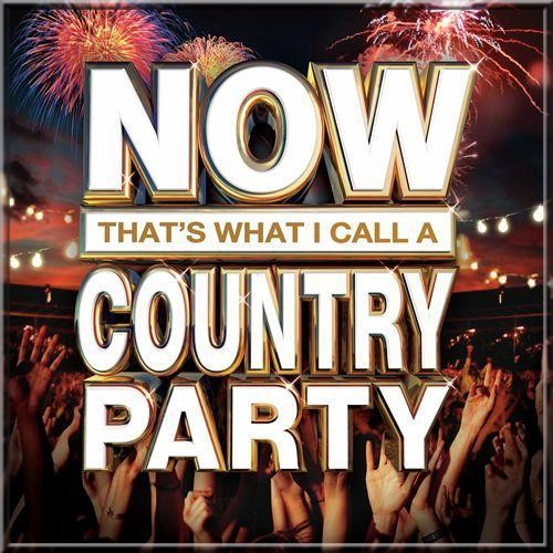 VA / Now That's What I Call A Country Party 2013 [2013]